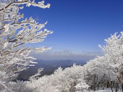 三峰山の霧氷 2012.01.25