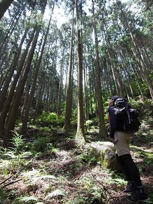 岩坂峠を取材中の植野めぐみさん