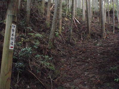 鞍取峠への道