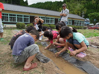みつえ体験交流館でプチ田植え 20110522