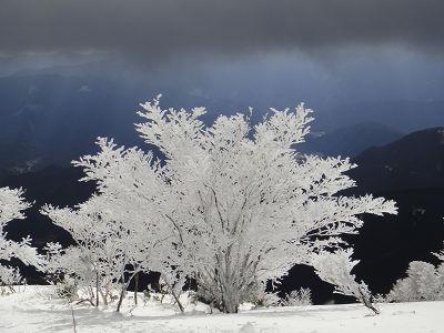 シーズン初日の三峰山_20110108